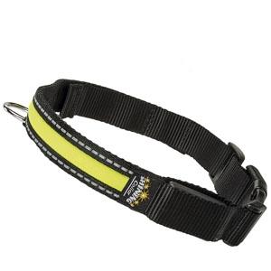 collar-luminoso-para-mascotas-ferplast-night