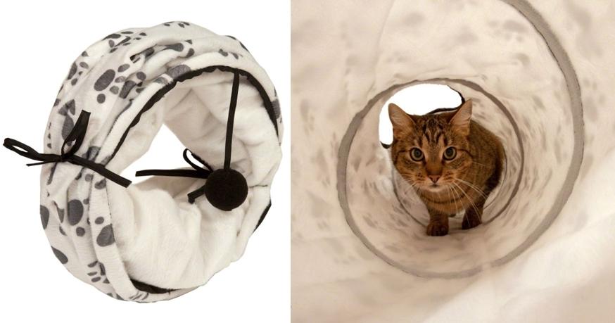 tunel-paw