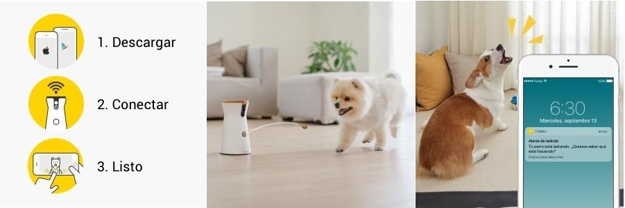 Cámara mascotas Furbo